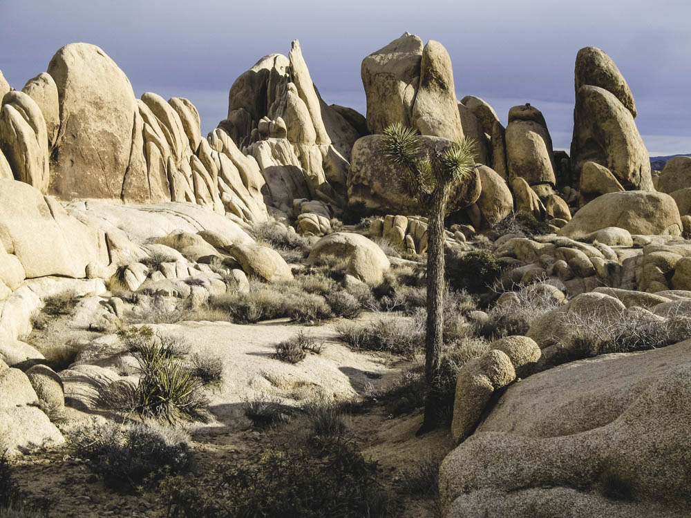Joshua Tree Granite, Self Esteem, Potential, A Daily Affirmation, www.adailyaffirmation.com